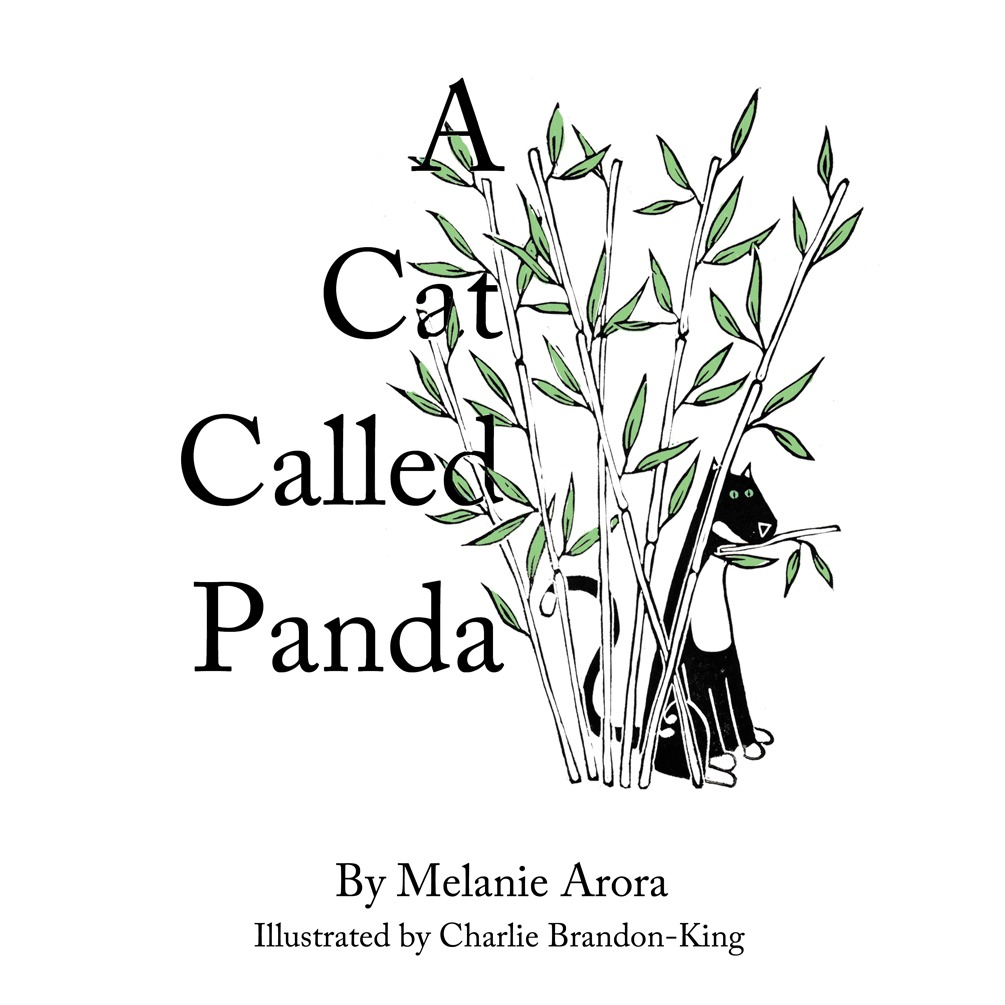 A Cat Called Panda Cover